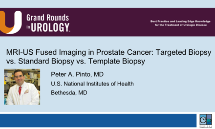 MRI-US Fused Imaging in Prostate Cancer: Targeted Biopsy vs. Standard Biopsy vs. Template Biopsy