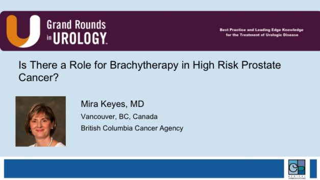 Is There a Role for Brachytherapy in High Risk Prostate Cancer?