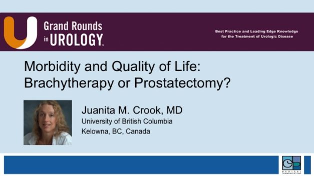 Morbidity and Quality of Life: Brachytherapy or Prostatectomy