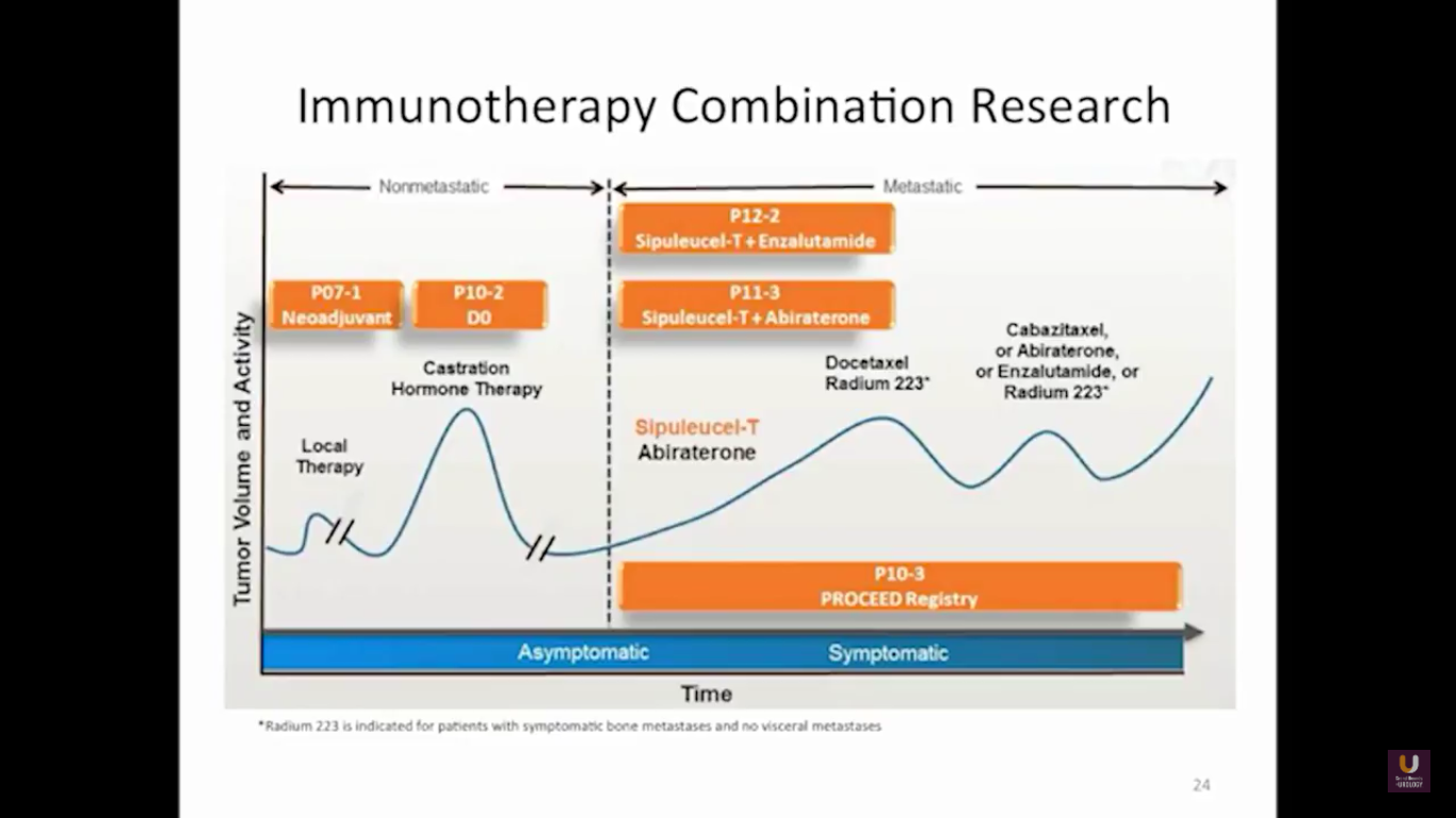 Immunotherapy Combination Research