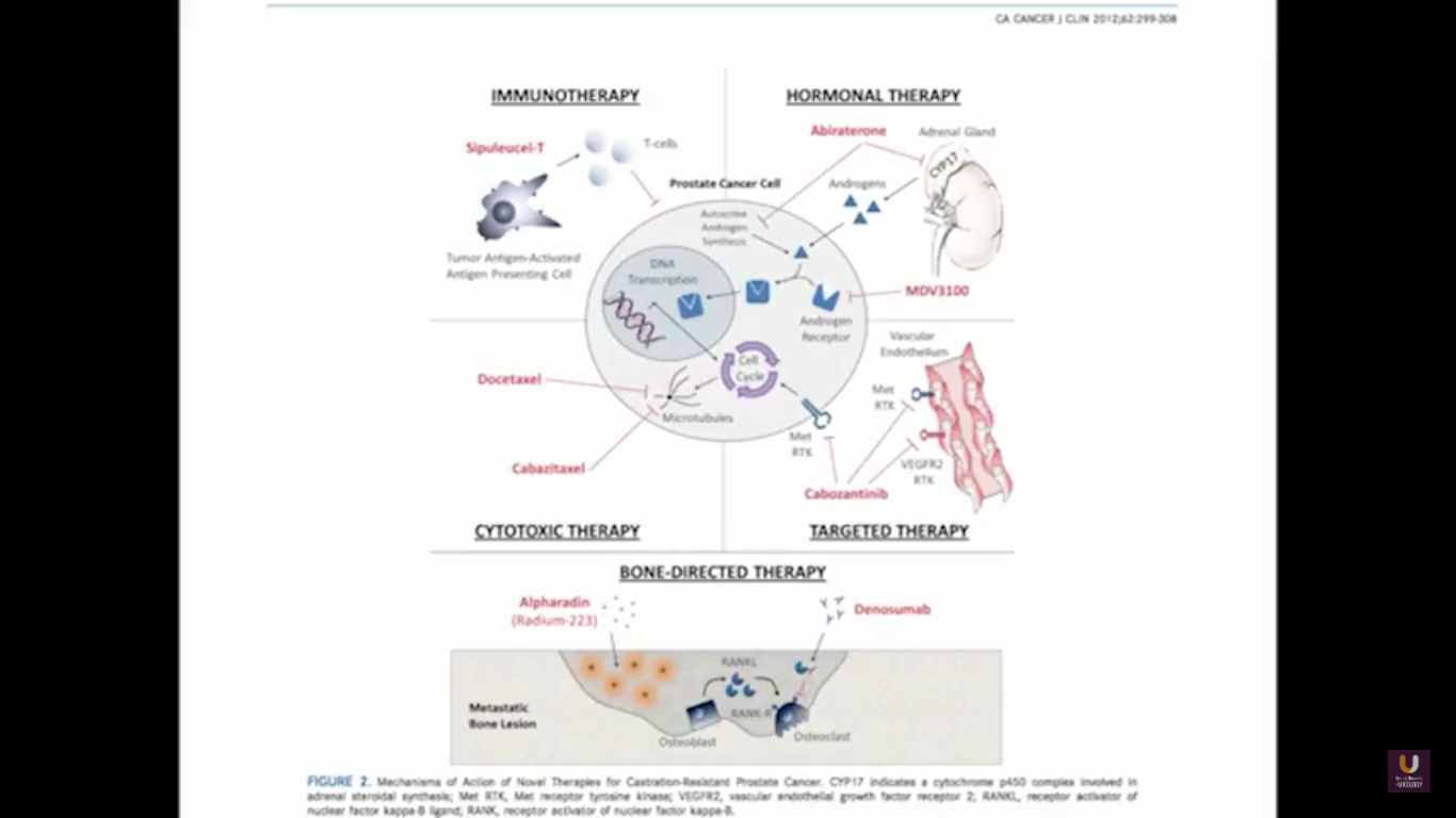 Immunotherapy Diagram