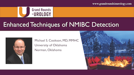Enhanced Techniques of Non-Muscle Invasive Bladder Cancer Detection