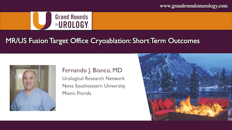 MR/US Fusion Target Office Cryoablation: Short-term Outcomes