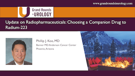 Update on Radiopharmaceuticals— Choosing a Companion Drug to Radium-223
