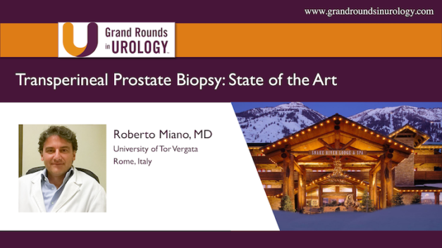 Transperineal Prostate Biopsy: State of the Art
