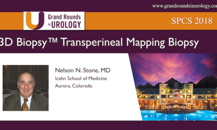 3DBiopsy™ Transperineal Mapping Biopsy