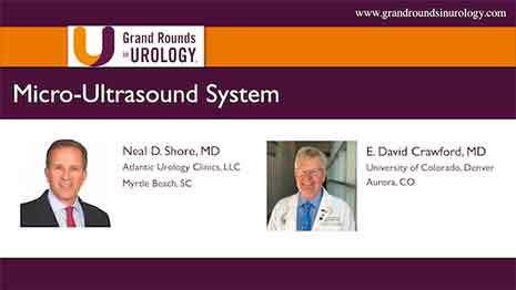 A Novel Micro-Ultrasound System for Improving Transrectal Prostate Biopsy
