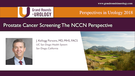 Prostate Cancer Screening: The NCCN Perspective