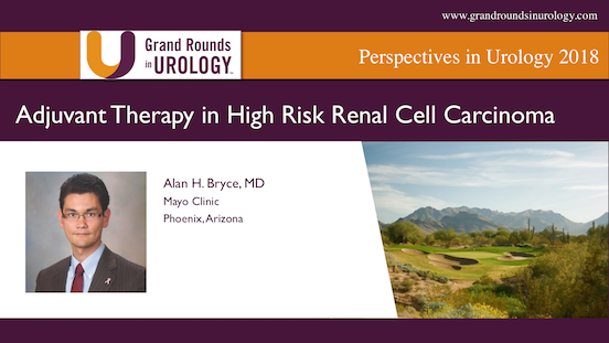 Adjuvant Therapy in High Risk Renal Cell Carcinoma