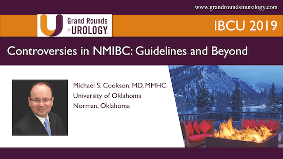 Controversies in NMIBC: Guidelines and Beyond