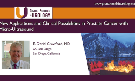 New Applications and Clinical Possibilities in Prostate Cancer with Micro-Ultrasound
