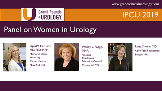 Panel on Women in Urology
