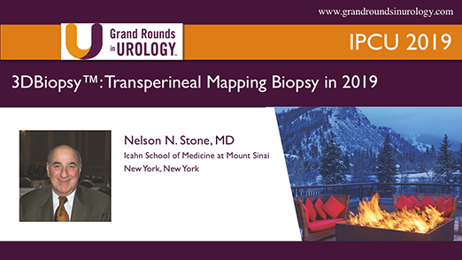 3DBiopsy™: Transperineal Mapping Biopsy in 2019