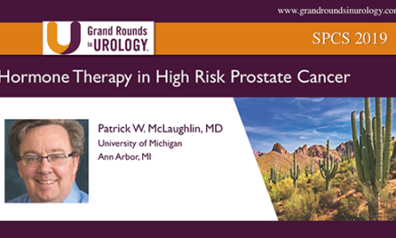 Hormone Therapy in High Risk Prostate Cancer