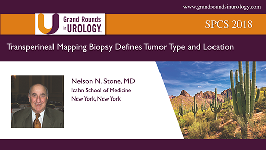 Transperineal Mapping Biopsy Defines Tumor Type and Location