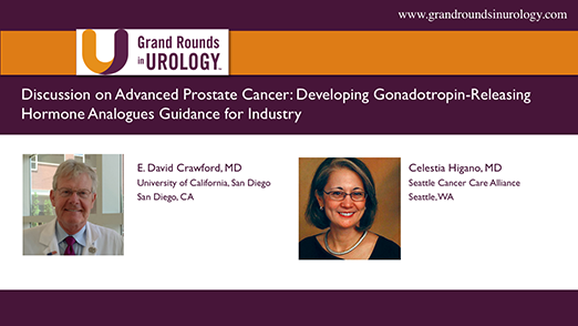 Discussion of FDA Industry Guidelines for Developing Gonadotropin-Releasing Hormone Analogues for Advanced Prostate Cancer