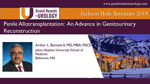 Penile Allotransplantation: An Advance in Genitourinary Reconstruction