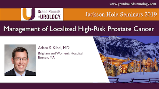 Management of Localized High-Risk Prostate Cancer