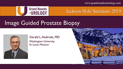 Image Guided Prostate Biopsy