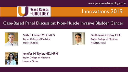 Case-Based Panel Discussion: Non-Muscle Invasive Bladder Cancer