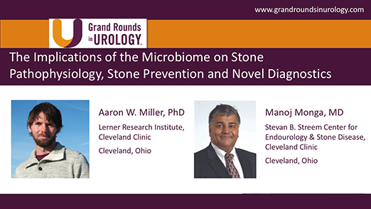 The Implications of the Microbiome on Stone Pathophysiology, Stone Prevention and Novel Diagnostics