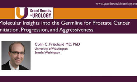 Molecular Insights into the Germline for Prostate Cancer Initiation, Progression, and Aggressiveness