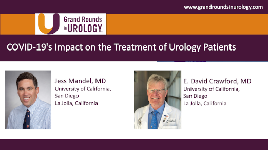 Dr. Mandel & Dr. Crawford - COVID-19 Impact on Treatment of Urology Patients