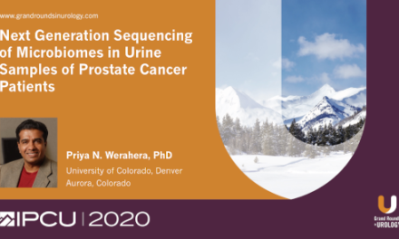 Next Generation Sequencing of Microbiomes in Urine Samples of Prostate Cancer Patients