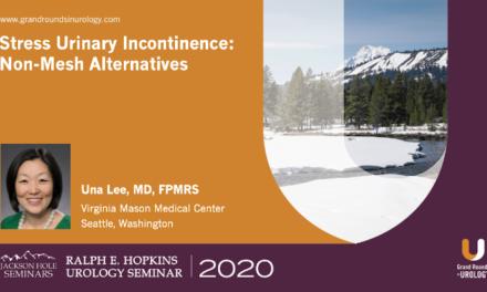 Stress Urinary Incontinence: Non-Mesh Alternatives