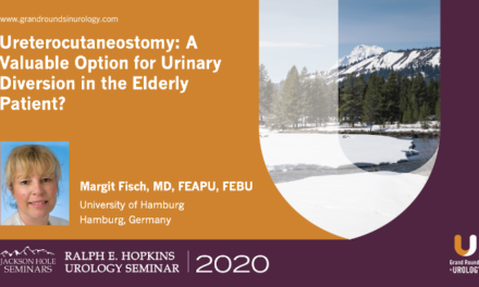 Ureterocutaneostomy: A Valuable Option for Urinary Diversion in the Elderly Patient?