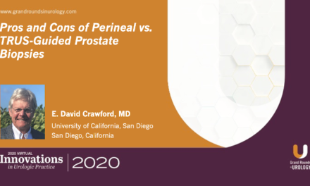 Pros and Cons of Perineal vs. TRUS-Guided Prostate Biopsies