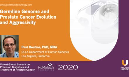 Germline Genetics and Prostate Cancer Evolution and Aggressivity