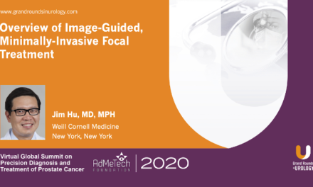 Overview of Image-Guided, Minimally-Invasive Focal Treatment