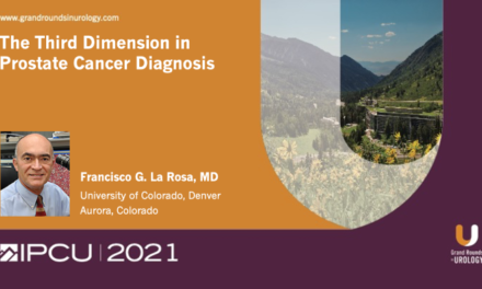 The Third Dimension in Prostate Cancer Diagnosis