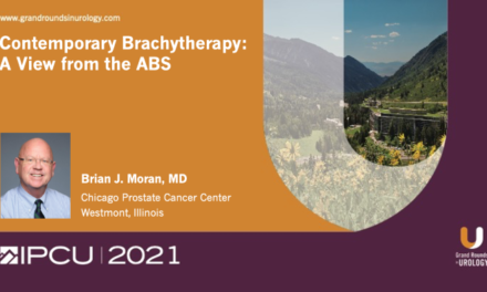 Contemporary Brachytherapy: A View from the ABS